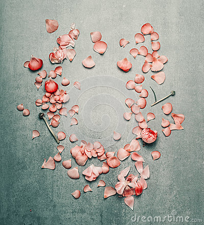 Free Beautiful Floral Frame With Pink Flowers Petals On  Turquoise Rustic Background, Royalty Free Stock Photography - 91968287