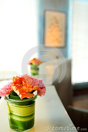 Beautiful flower in room