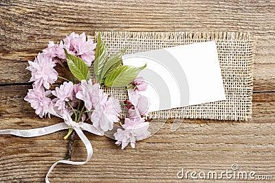 Beautiful flowering almond (prunus triloba) on wooden background