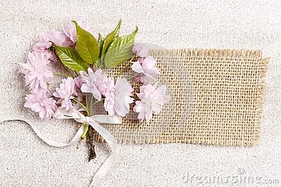 Beautiful flowering almond (prunus triloba) on wooden background