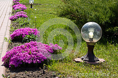 Beautiful flowers and  lantern