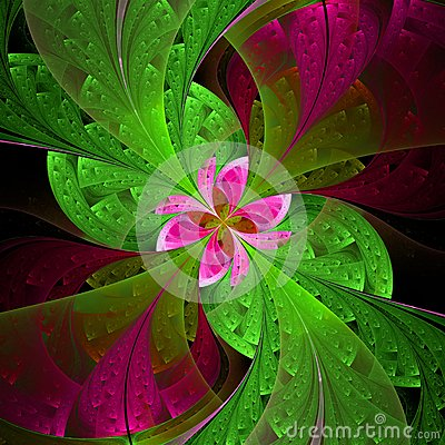 Free Beautiful Fractal Flower In Green And Pink. Computer Generated G Stock Images - 38194354