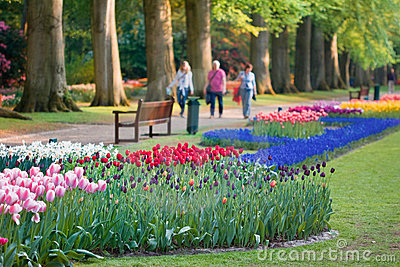 Beautiful garden of colorful flowers in spring