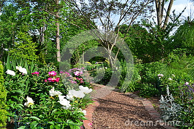 A Beautiful Garden Path