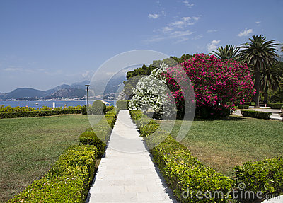 Beautiful garden on the seafront