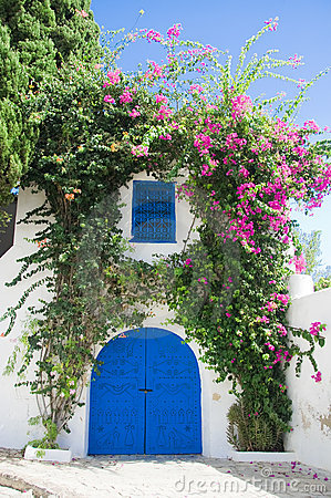 Beautiful gate of Sidi Bou Said