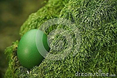 Beautiful green Easter egg