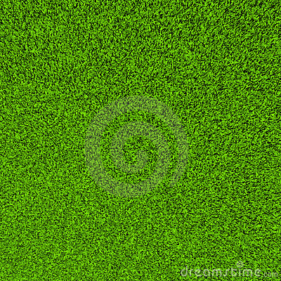 Beautiful green grass sward background