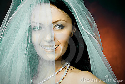 Beautiful happy brunette bride wearing a veil