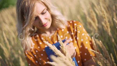 beautiful happy young woman field spikelets wheat book sunset blonde grass having good time 123547289