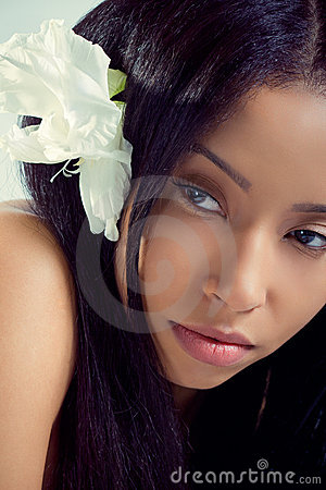 Free Beautiful Hawaiian Woman With A Tropical Flower Stock Images - 20456644