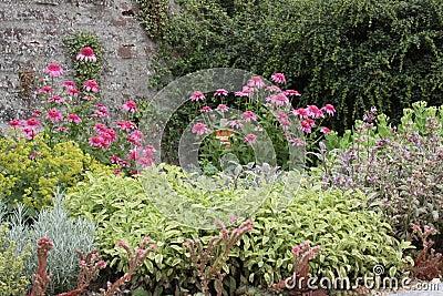Beautiful herbs garden bed