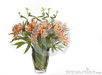 Beautiful holiday flowers