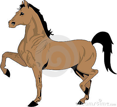 Beautiful Horse Drawing, Color Royalty Free Stock ...