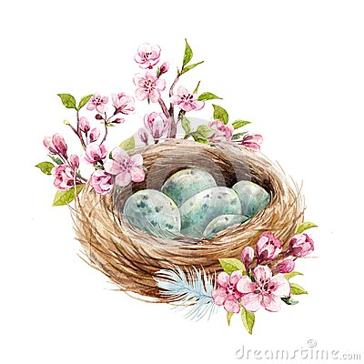 Watercolor bird nest with eggs Cartoon Illustration