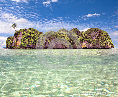 Beautiful island with a palm tree at ocean
