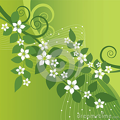 Free Beautiful Jasmine Flowers And Green Swirls Royalty Free Stock Photos - 31401838