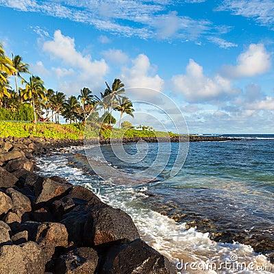 Beautiful Kauai Beach