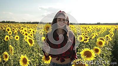 Beautiful lady walking in summer sunflower field stock video footage
