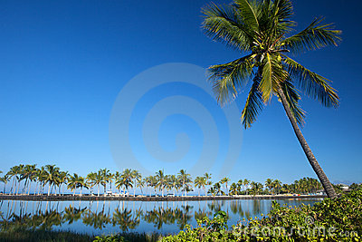 Beautiful laguna with palm trees, blue sky