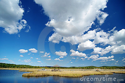 Beautiful lake with blue sky and golden bushes