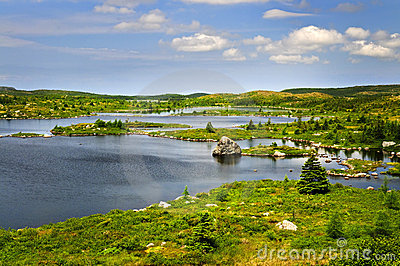 Beautiful lake shore in Newfoundland