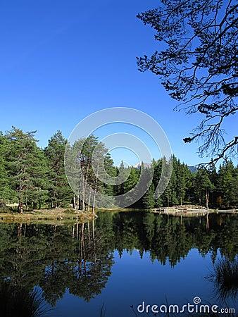 Beautiful lake in tirol