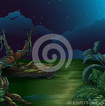 A beautiful landscape in a dark night
