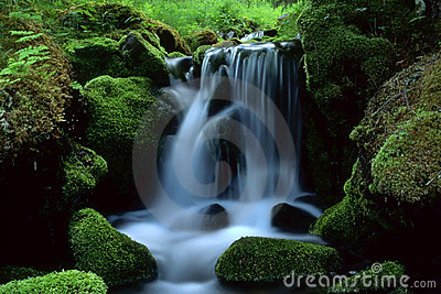 Beautiful landscape of flowing water