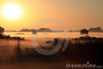 Beautiful Landscape In The Foggy Morning Royalty Free Stock Photo - Image: 15972515