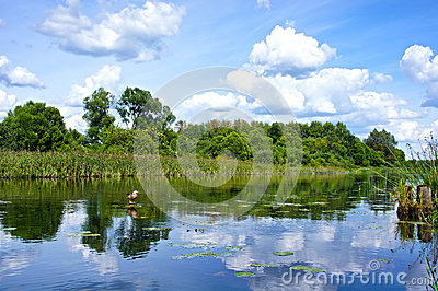 Beautiful Landscape with reflection on River Blue Sky and Clouds