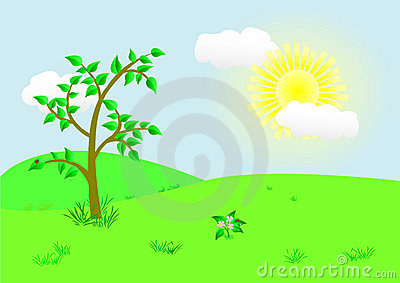 Beautiful landscape. Vector illustration.
