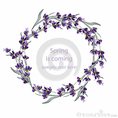 Beautiful lavender wreath Vector illustration. Hand drawn flowers for Thank you card, Greeting card or Invitation