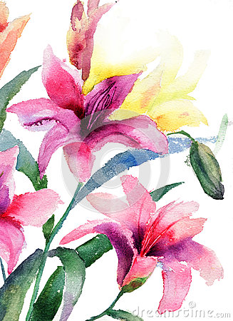 Beautiful Lily flowers