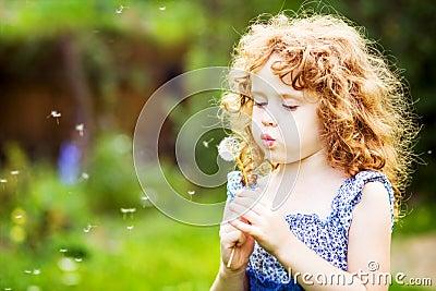 Beautiful little curly girl blowing dandelion