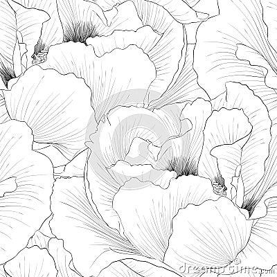 Free Beautiful Monochrome, Black And White Seamless Background With Flowers Plant Paeonia Arborea (Tree Peony). Stock Photography - 42508222