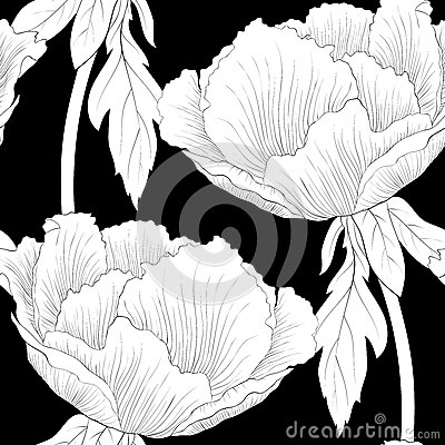 Free Beautiful Monochrome, Black And White Seamless Background With Flowers Plant Paeonia Arborea (Tree Peony) With Stem And Leaves. Royalty Free Stock Photo - 42508245