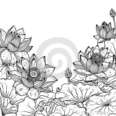 Free Beautiful Monochrome Vector Floral Frame With Lotus Stock Image - 66626771