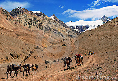 Beautiful Mountain landscape near Aconcagua