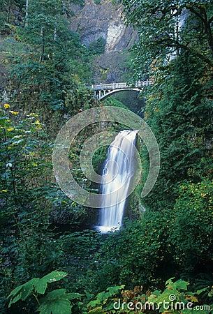 Beautiful Multnomah Falls