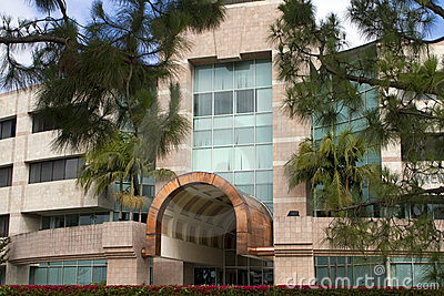 beautiful trees in front of office building stock photo image 57666165 beautiful office buildings