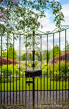 Free Beautiful Old Garden Gate Covered With Green Ivy Royalty Free Stock Photography - 66736777