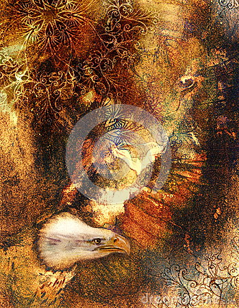 Beautiful painting of eagle on an abstract background, color with spot ... Otterhound Exercise