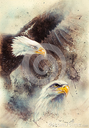Free Beautiful Painting Of Two Eagles On An Abstract Background Symbols Of The USA Royalty Free Stock Images - 50217379