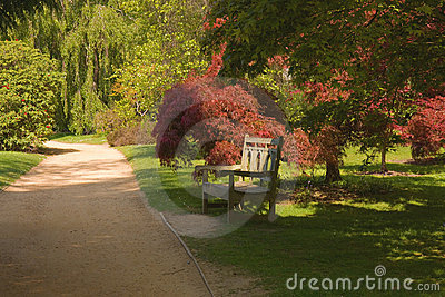 Beautiful Park Gardens Sunlit Bench