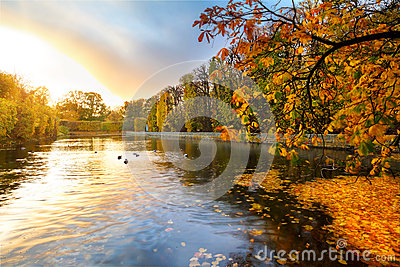 Beautiful park pond in autumn at sunset