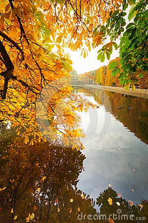 Beautiful park pond in autumn