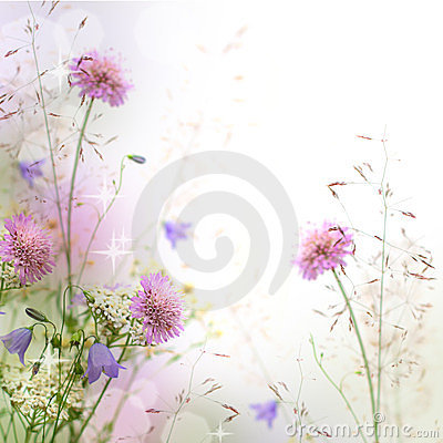 Free Beautiful Pastel Floral Border Stock Photography - 23390942