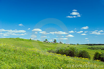 Beautiful pastoral  landscape