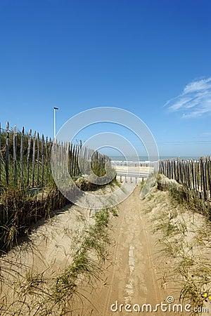 A beautiful path through the dunes